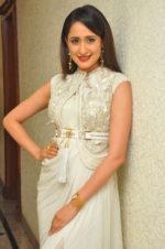 Brand New Beautiful Pics Of Pragya Jaiswal | Actresses