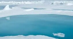 Sweden, India Agree To Enhance Cooperation In Polar Science – Learn More